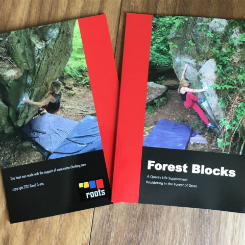 Preview of Forest Blocks