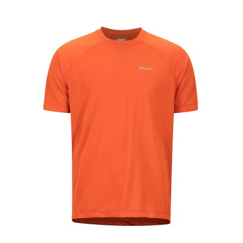 Preview of Accelerate Short Sleeve T-Shirt