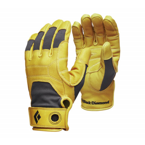 Preview of Transition Glove